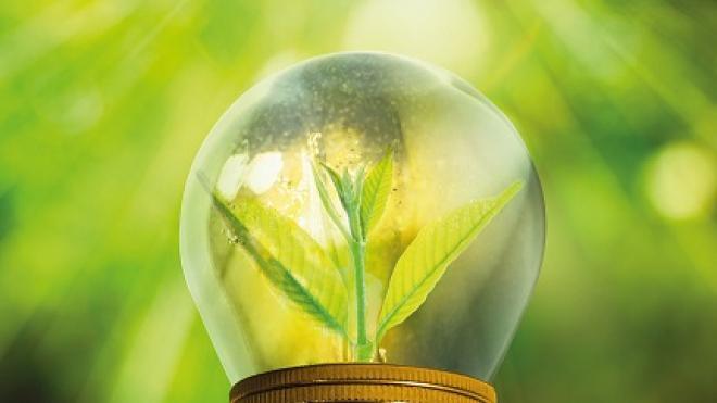 a green lightbulb