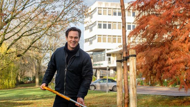 Man stands with spade in front of newly planted tree