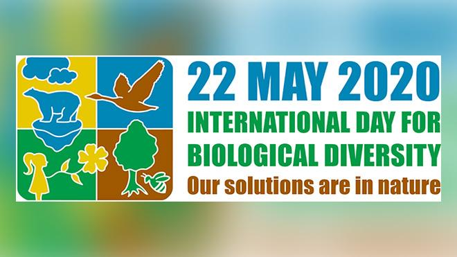 Biological Diversity Day logo