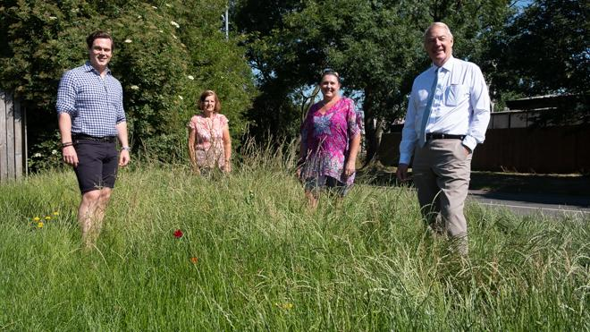 group of people stood on a grass verge overgrown with wild flowers and plants