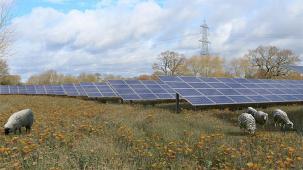 Artist's impression of solar panels on solar farm