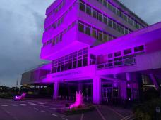 County Hall shines in purple