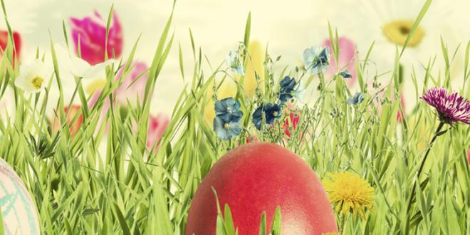 Easter eggs in spring flowers