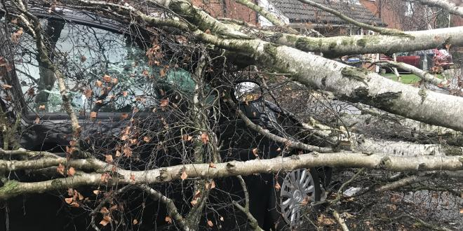 Storm Diana caused disruption in Leicestershire
