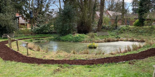 Photo of a village pond